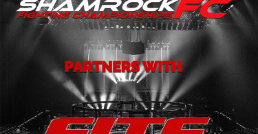 partners with